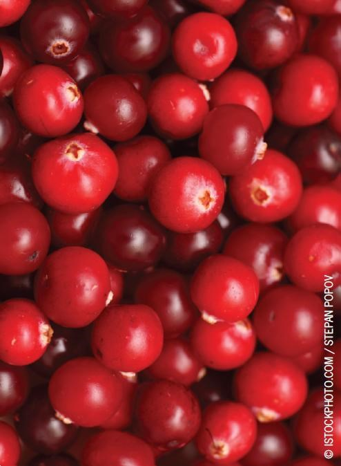 A prior meta-analysis had shown that cranberries reduced UTI recurrences.