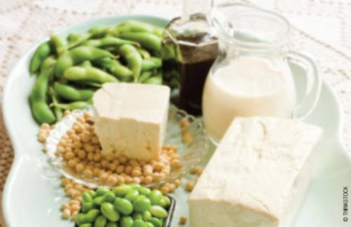 Plant Protein Intake Offers Benefits in Phosphorus, Acid-Base Balance for CKD Patients