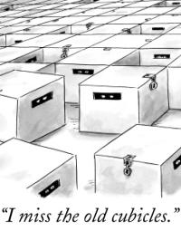 Renal & Urology News Cartoons