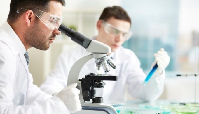 Researchers: Consider cT2c Prostate Cancer Intermediate Risk
