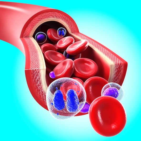 Study shows benefit of initiating epoetin beta therapy at hemoglobin levels not less than 10 g/dL in non-dialysis CKD patients.