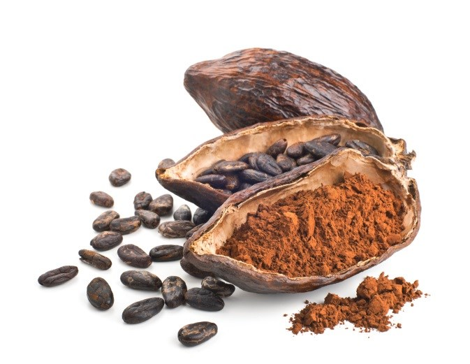 Cocoa Flavanols Protect Dialysis Patients' Cardiovascular System