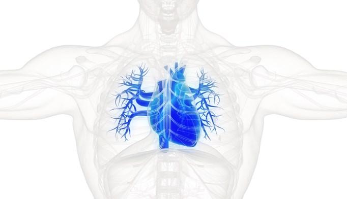 Serum Creatinine Doubling Ups Cardiovascular Risks in Diabetes Patients