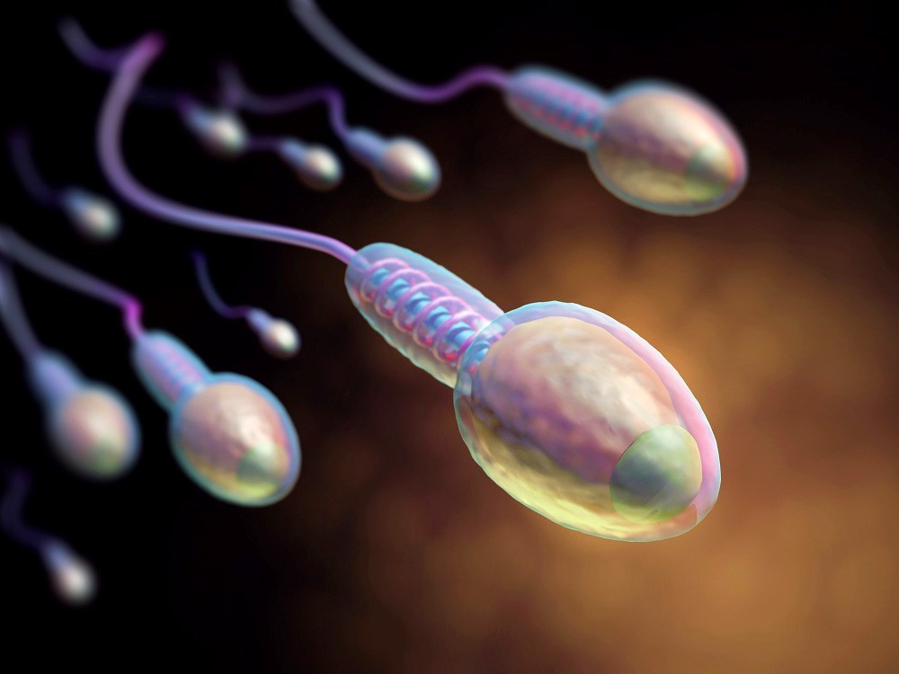 Twenty-Seven Viruses Can Be Detected in Semen