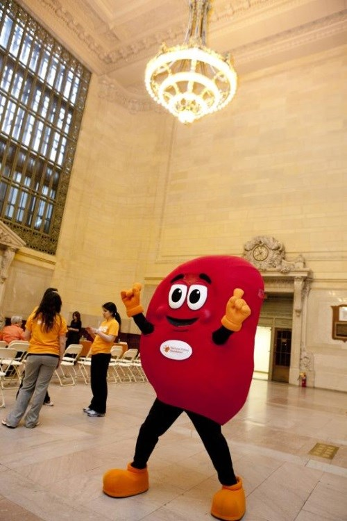 Sidney the Kidney (© National Kidney Foundation)