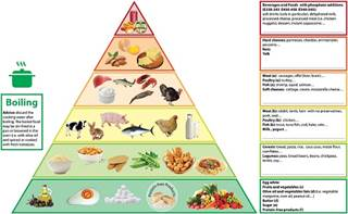 Food Low In Phosphorus And Protein
