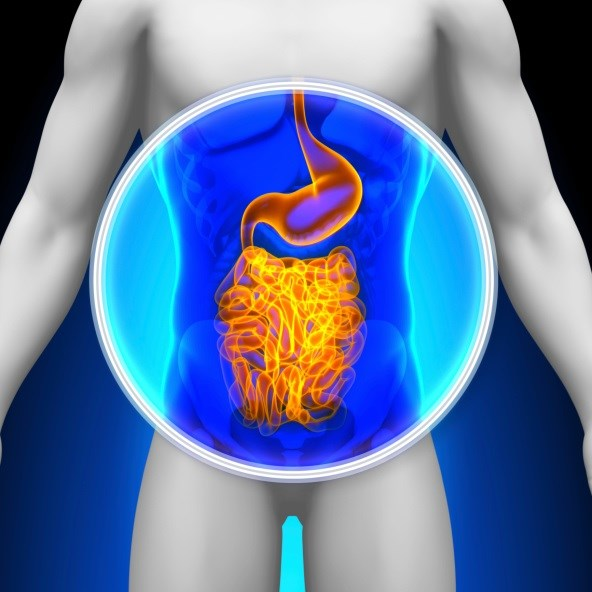 Patients in the lowest quartile of mortality risk were more likely to be screened for colon cancer than those in the highest quartile.