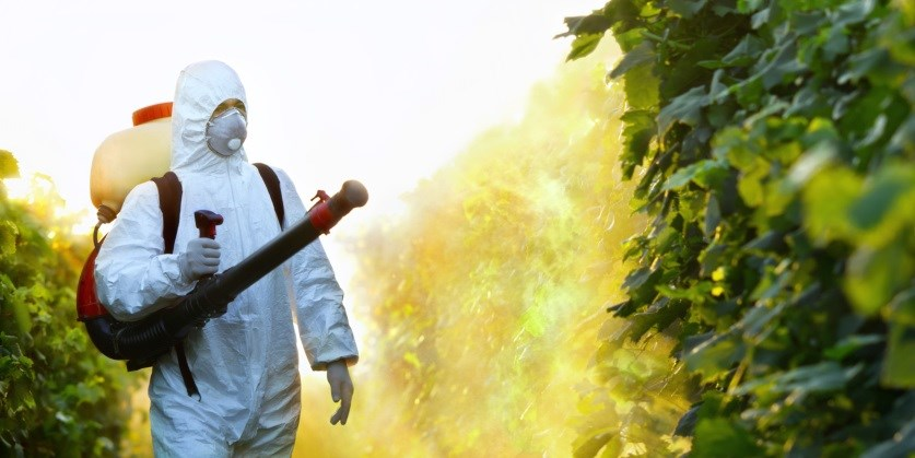 Pesticide exposure is associated with a 61% increased risk for diabetes.