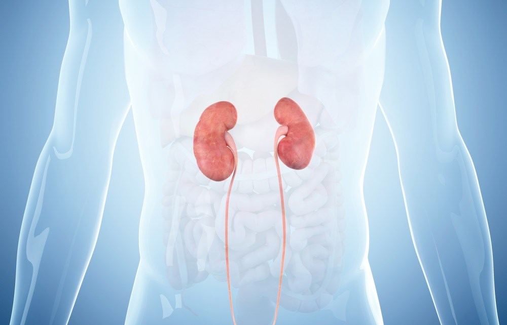 'Clinically Negligible' Residual Kidney Function Still Beneficial