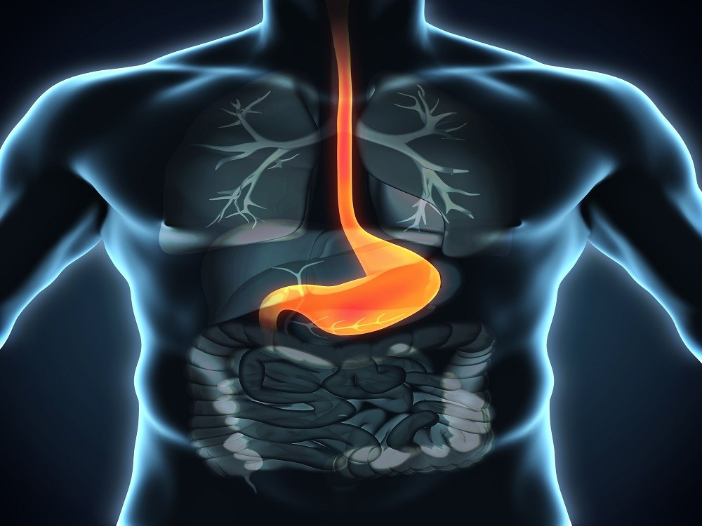Plasma TMAO May Help Predict Cardiovascular Mortality Risk