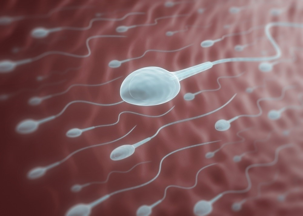 CBP was associated with a reduction in sperm concentration, sperm vitality, sperm total and progressive motility.