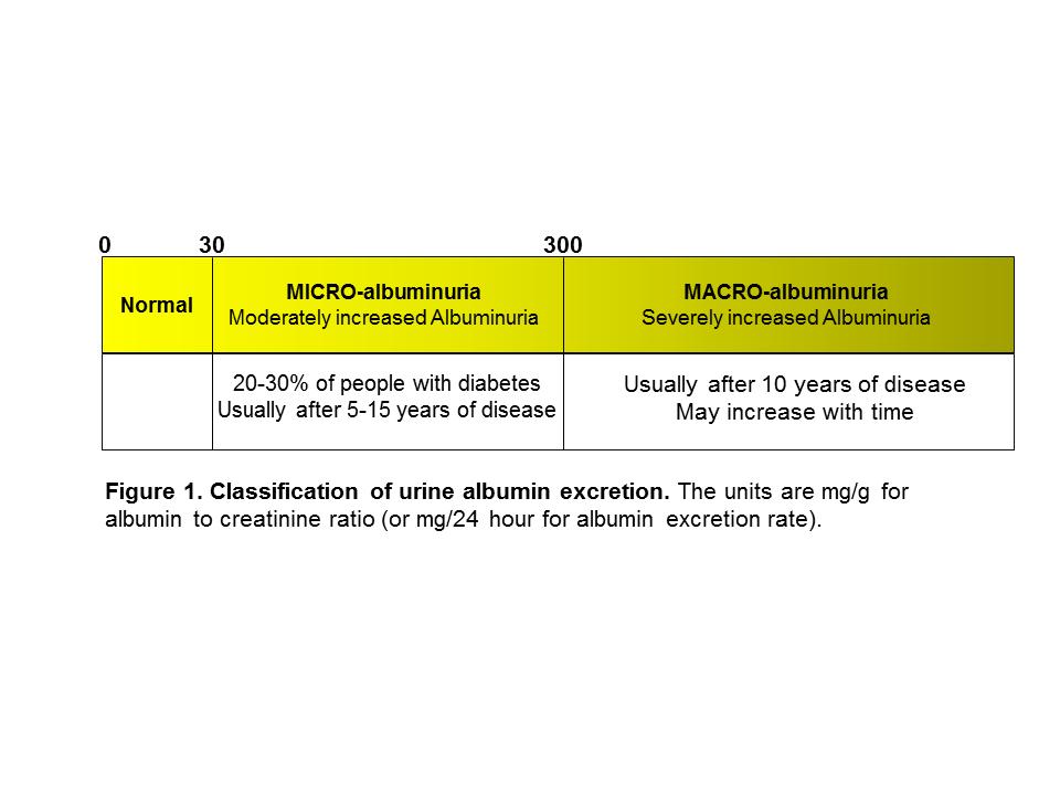 Diabetic Kidney Disease General Management Renal And Urology News